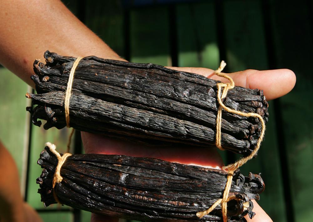 vanilla tahitensis